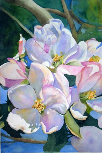 Spring flowers a collection by artists of the aquanet art list apple blossom time mightylinksfo